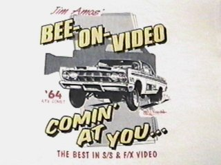BEE ON VIDEO